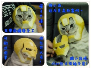 cat-ironman